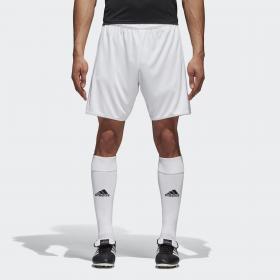 Спортивные шорты (трикотаж)  TASTIGO17 SHO