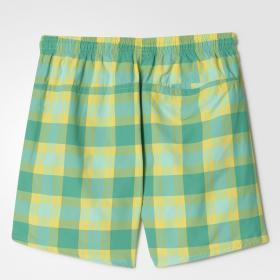 Пляжные шорты Checked Water K BJ9625