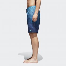 Пляжные шорты Wave M CV5167