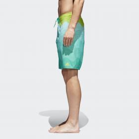 Пляжные шорты Wave M CV5168
