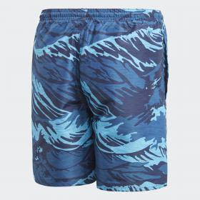 Пляжные шорты Parley K CV5209