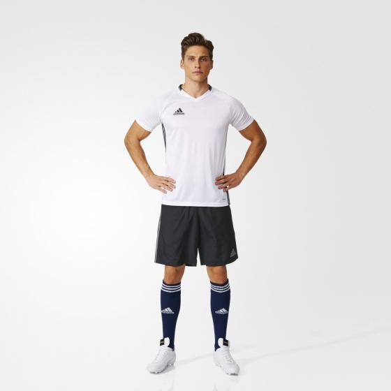Condivo16 Shorts M AN9856