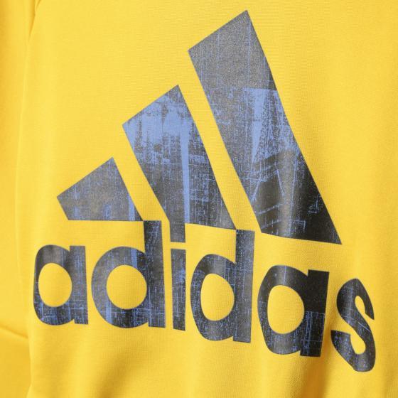 Детская толстовка Adidas Tech Basic Logo